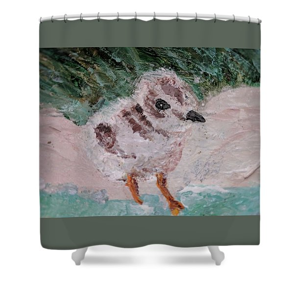 Good Harbor Piping Plover Chick #1 Shower Curtain
