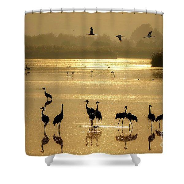 Good Morning Chula Lake Shower Curtain