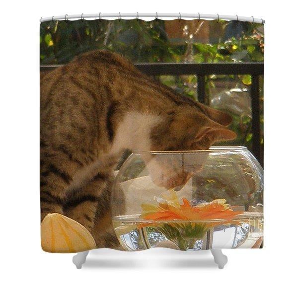 Got Fish Shower Curtain