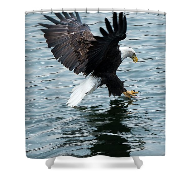 Grabbing For Lunch Shower Curtain