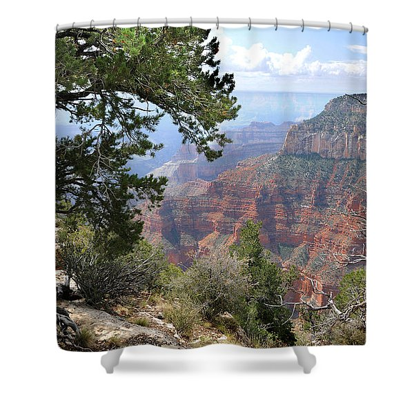Grand Canyon North Rim - Through The Trees Shower Curtain