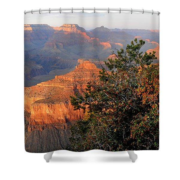 Grand Canyon South Rim - Red Berry Bush Along Path Shower Curtain