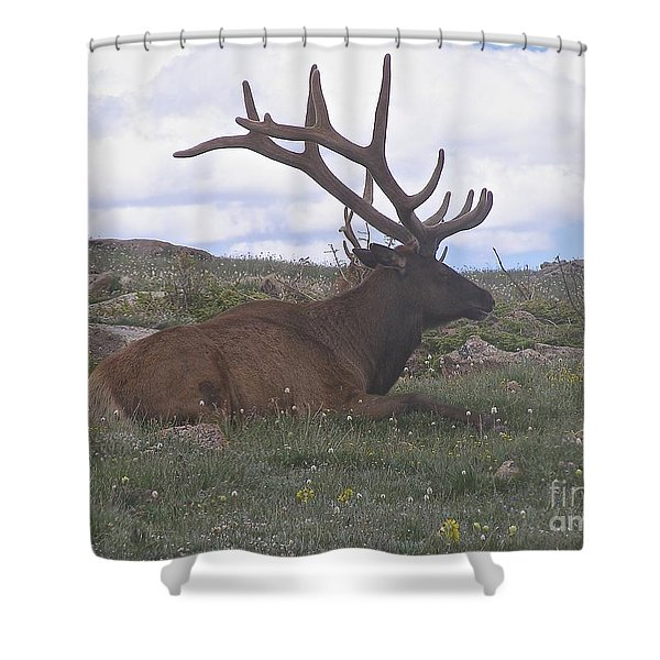 Grand Dad  Shower Curtain