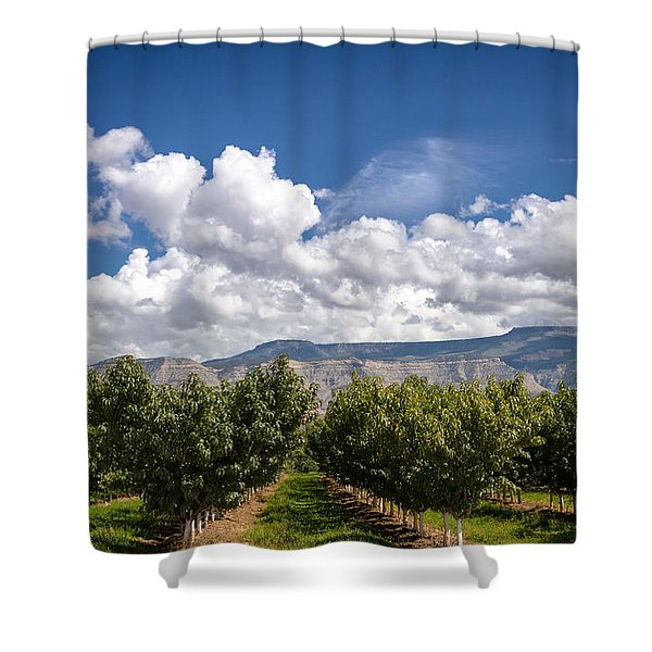 Grand Valley Orchards Shower Curtain