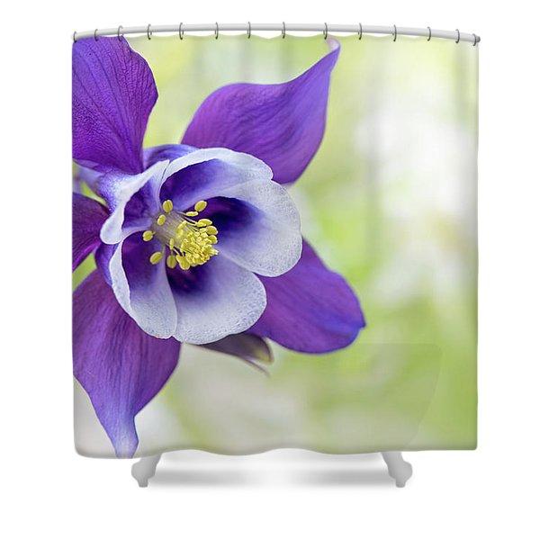 Granny's Bonnet Flower Shower Curtain