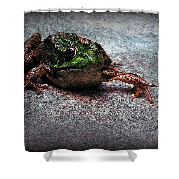 Granter Of Three Wishes Shower Curtain