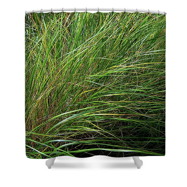 Grass Shower Curtain