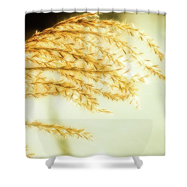 Grasses Of Gold Shower Curtain
