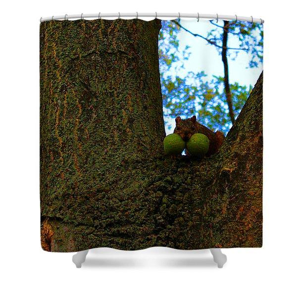 Grateful Tree Squirrel Shower Curtain