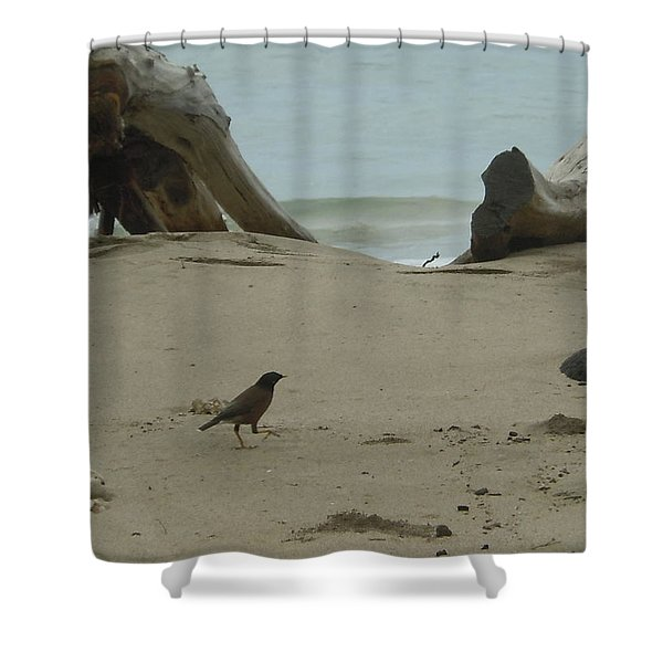 Gray Day On Maui Shower Curtain