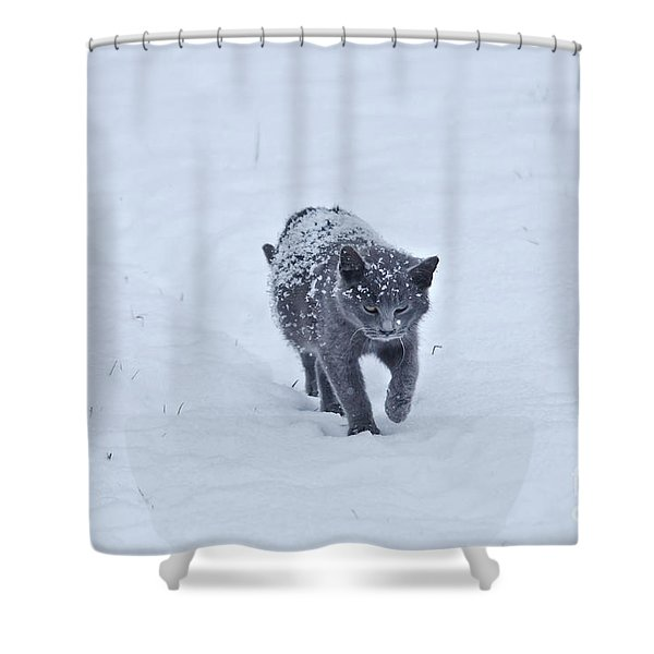 Gray On White Shower Curtain