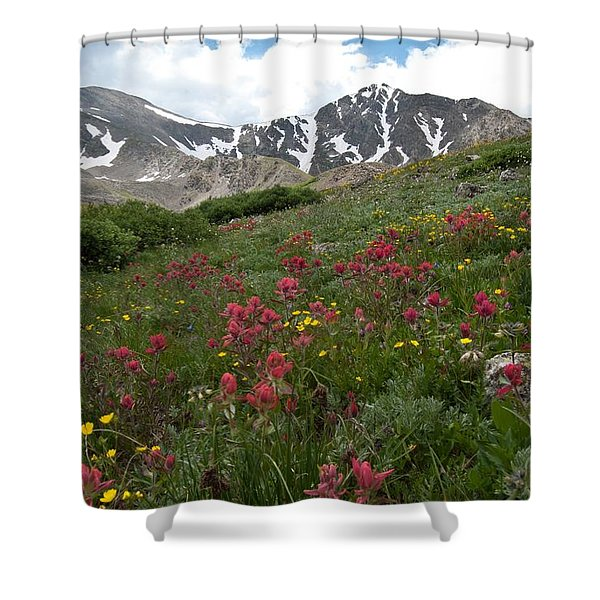 Gray's And Torreys Shower Curtain