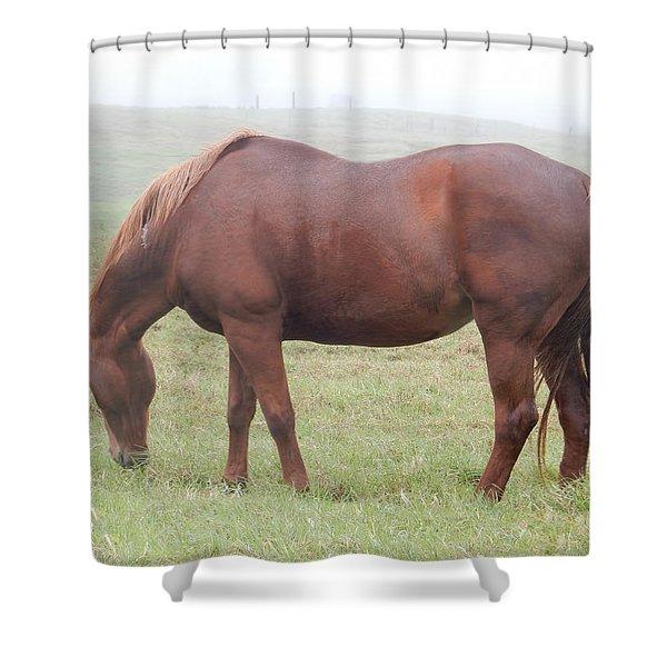 Grazing Again Shower Curtain