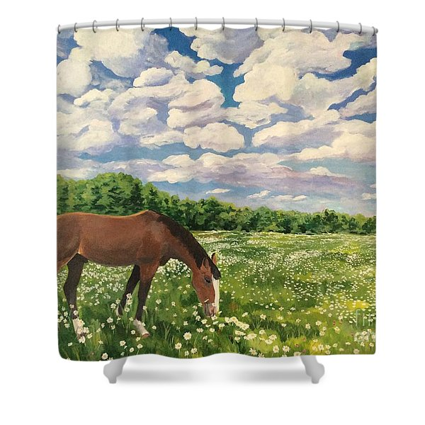 Grazing Among The Daisies Shower Curtain