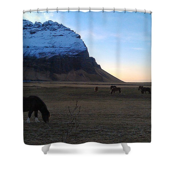 Grazing At Dawn Shower Curtain