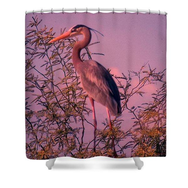 Great Blue Heron - Artistic 6 Shower Curtain