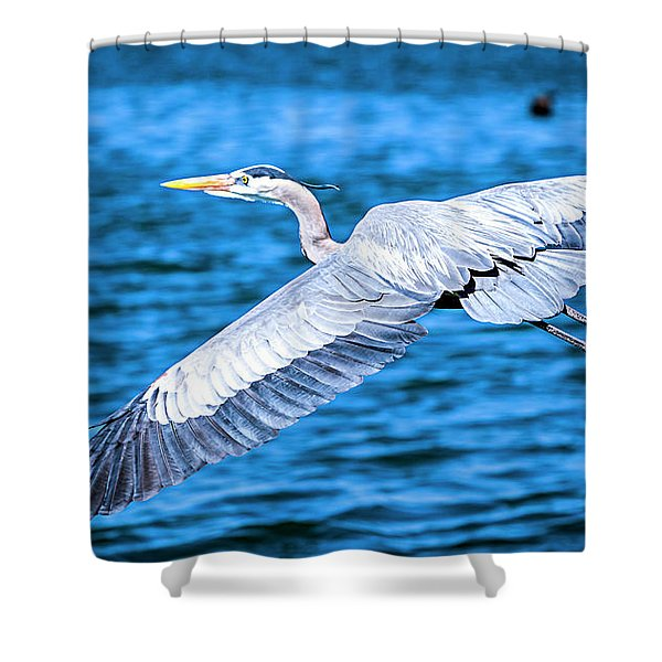 Shower Curtain featuring the photograph Great Blue Heron Flight by David Millenheft