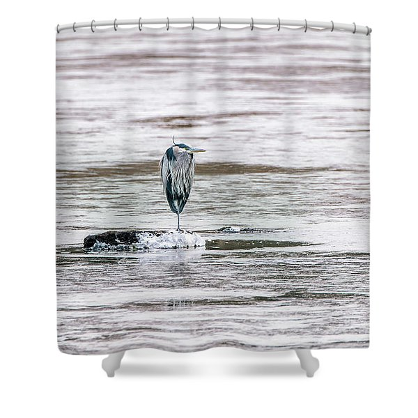 Great Blue Heron On A Frozen Lake Shower Curtain