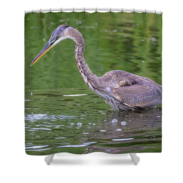 Great Blue Heron - The One That Got Away Shower Curtain