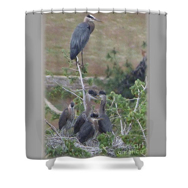 Shower Curtain featuring the photograph Great Blue Heron Watching Over Nest by Charles Robinson