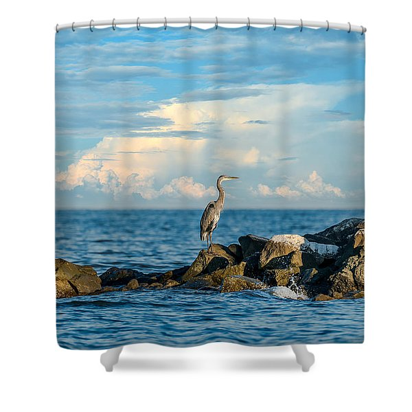 Great Blue Heron World Shower Curtain
