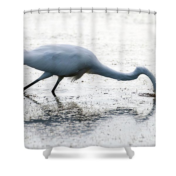 Great Egret Faceplant Shower Curtain