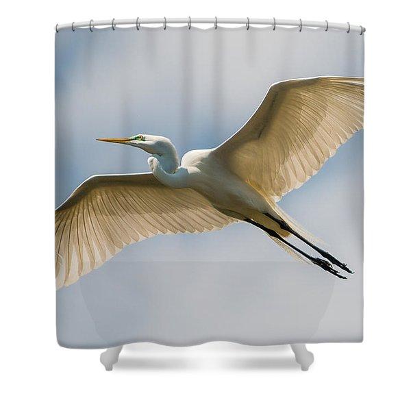 Great Egret In Flight - St. Augustine Fl Shower Curtain