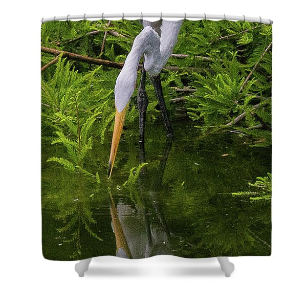 Great Egret With Its Reflection Shower Curtain