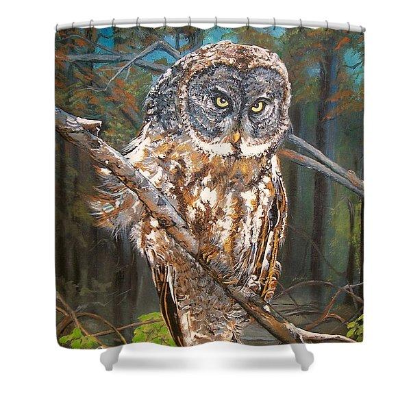 Great Grey Owl 2 Shower Curtain