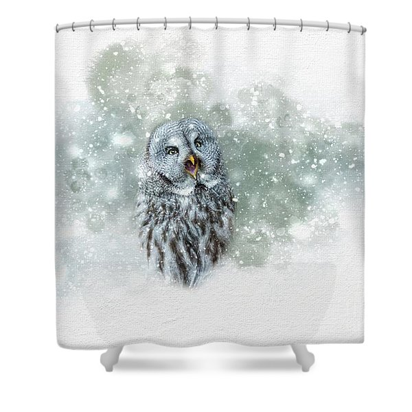 Great Grey Owl In Snowstorm Shower Curtain