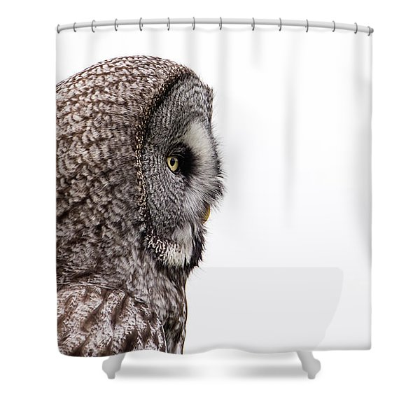 Great Grey's Profile On White Shower Curtain