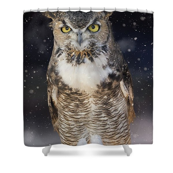 Great Horned Owl In The Snow Shower Curtain