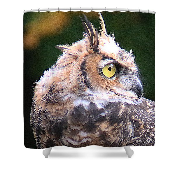 Shower Curtain featuring the photograph Great Horned Owl Portrait by William Selander