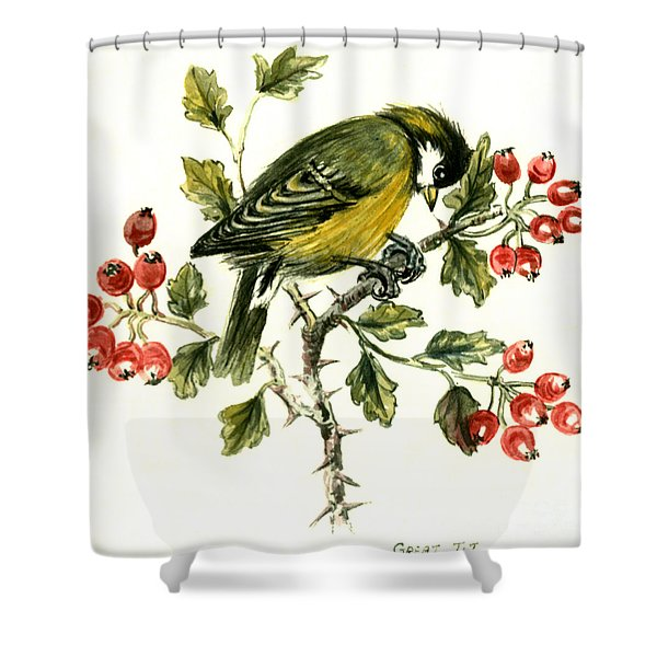 Great Tit On Hawthorn Shower Curtain