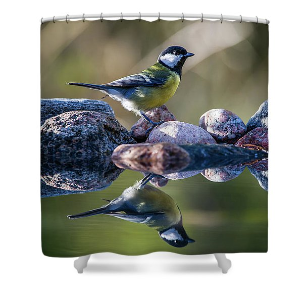 Great Tit On The Stone Shower Curtain