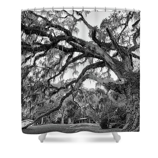 Great Tree Shower Curtain