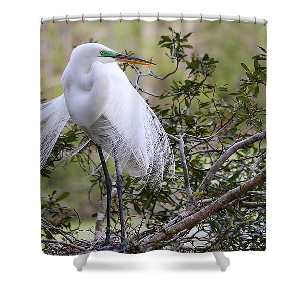 Great White Egret Shower Curtain