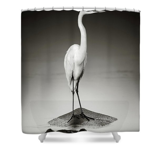 Great White Egret On Hippo Shower Curtain