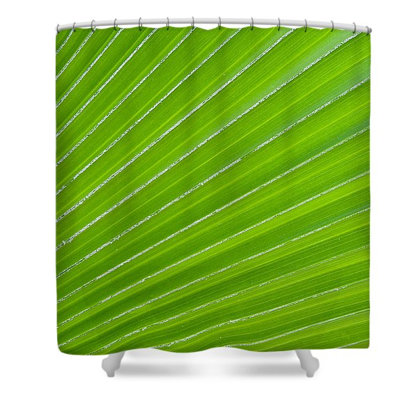 Green Abstract No. 1 Shower Curtain