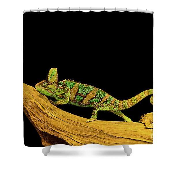 Green Chameleon Shower Curtain