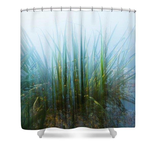 Morning At The Lake Shower Curtain