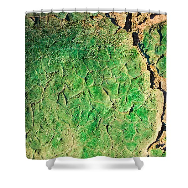 Green Flaking Brickwork Shower Curtain