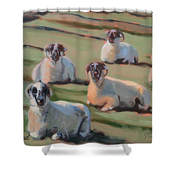 Green Hill Sheep At Rest Shower Curtain