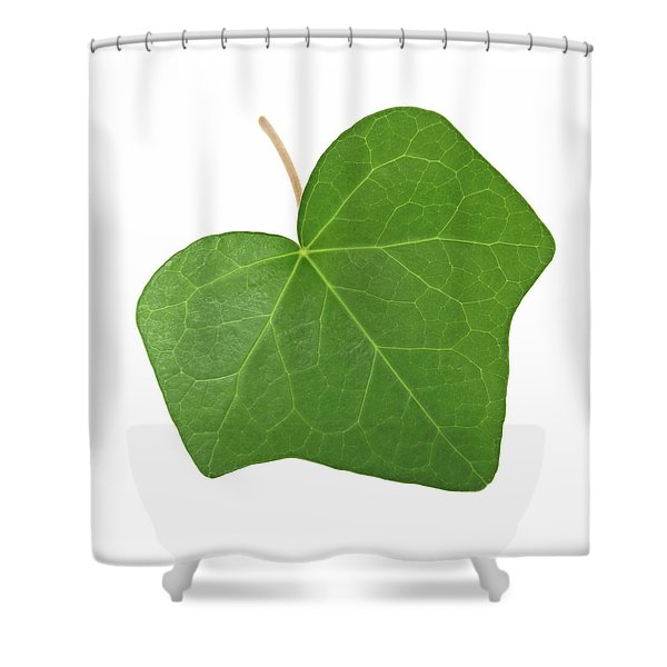 Green Ivy Leaf Shower Curtain