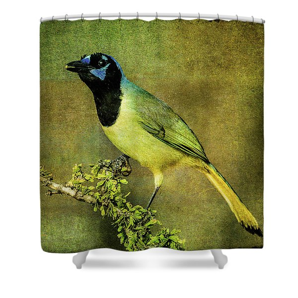 Green Jay With Textures Shower Curtain