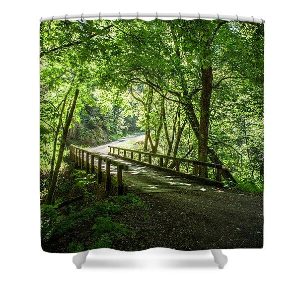 Green Nature Bridge Shower Curtain