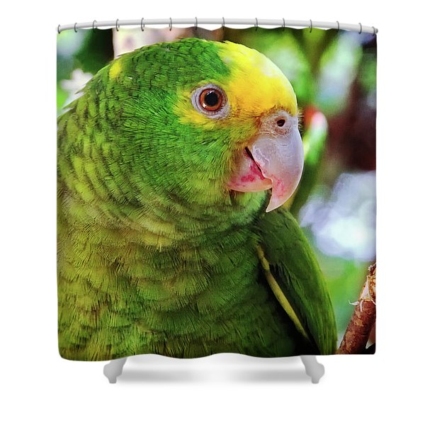 Green Parrot Shower Curtain