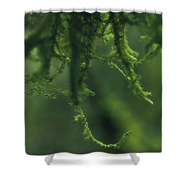 Flavorofthemonth Shower Curtain