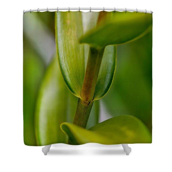 Green Stork Shower Curtain