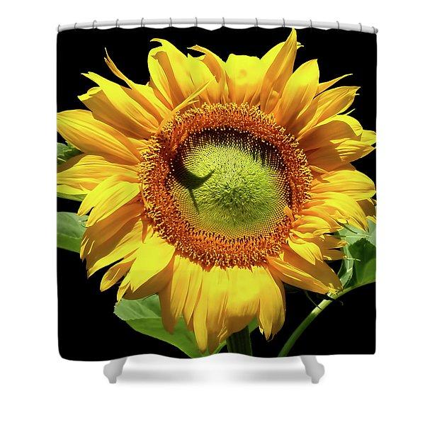 Greenburst Sunflower Shower Curtain